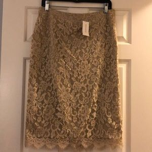 Banana Republic Champagne Lace Skirt